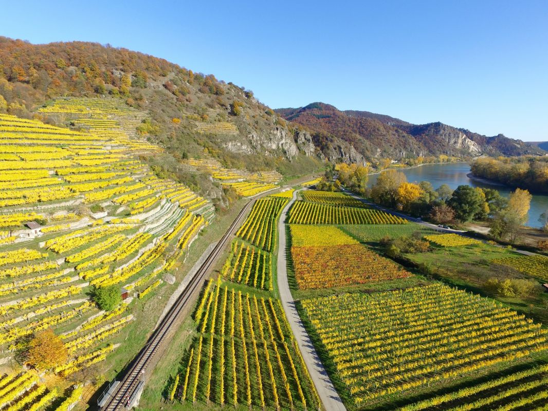 original_upper-rhine-valley-1030909