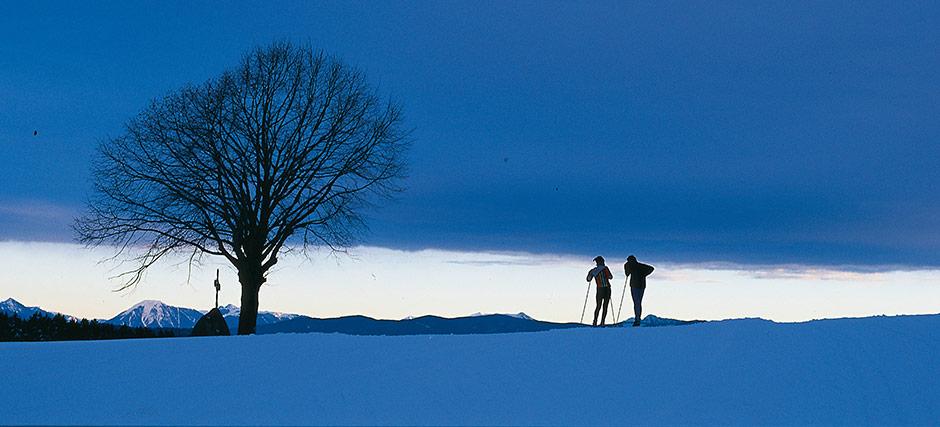 langlauf-winter-02553-bt940
