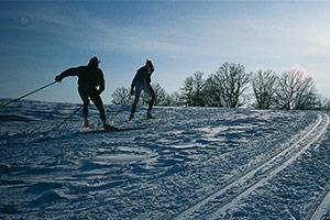 langlauf-winter-02555-ba300